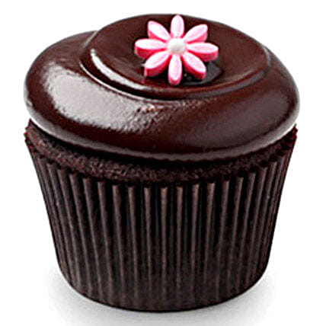Chocolate Squared Cupcakes 12 Eggless