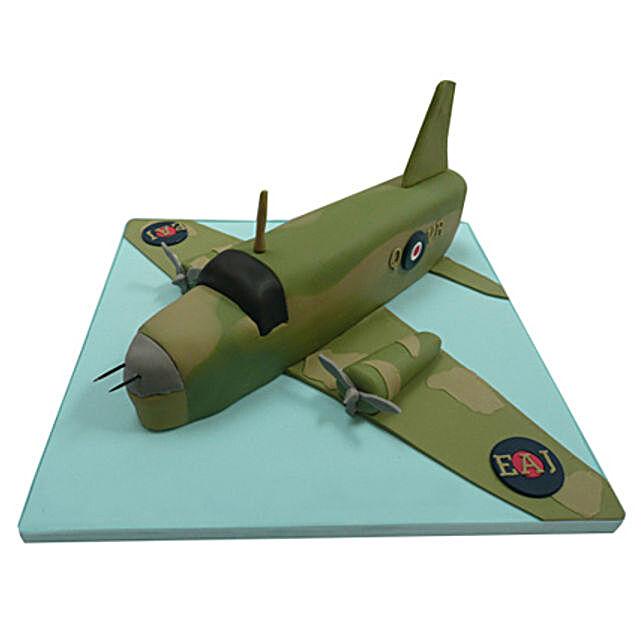 Green Airplane Cake 2kg Chocolate
