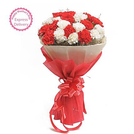 Mothers Day Spl Red N White Carnations FNP