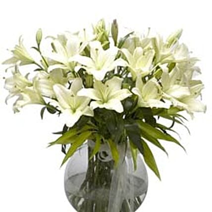 Refined Beauty - Arrangement of 15 white lilies in a glass vase.:Premium Gifts