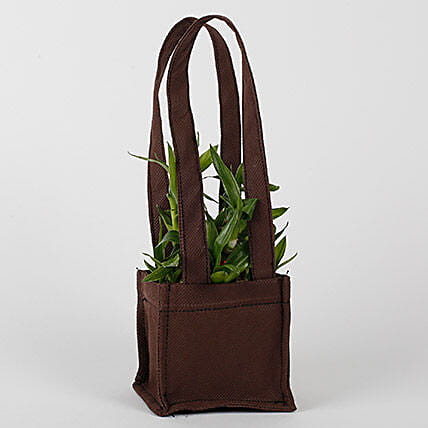 Two Layered Bamboo in Coffee Brown Bag