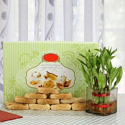 Milk cake with lucky bamboo