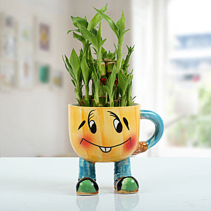 Bamboo Plant with Smiley Caramic Pot