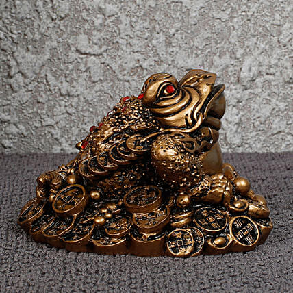 The Feng Shui Frog For Wealth