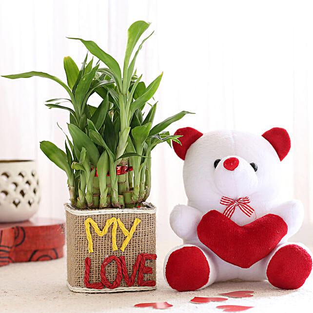 Printed Plant Vase N Teddy Online