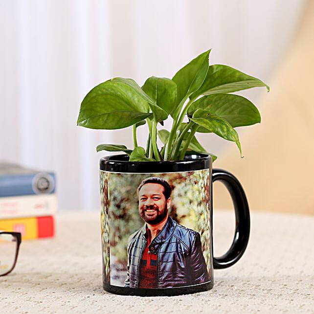 Money Plant In Stylish Personalised Mug