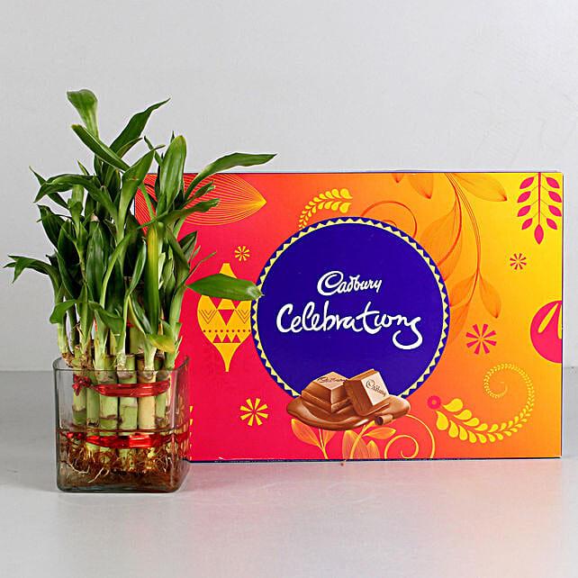 Two Layer Bamboo Plant & Cadbury Celebrations Combo