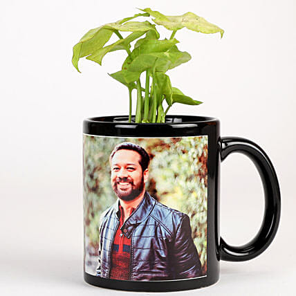 Syngonium Plant In Stylish Personalised Mug