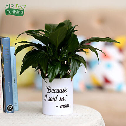Peace Lily In White Printed Pot For Mom