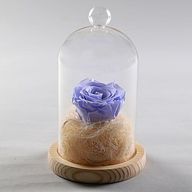 Image result for Lavender Blue Forever Rose in Glass Dome