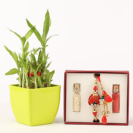 Designer Lumba Rakhi Two Layer Bamboo Plant