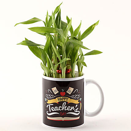 Happy Teachers Day Special Two Layer Bamboo Plant