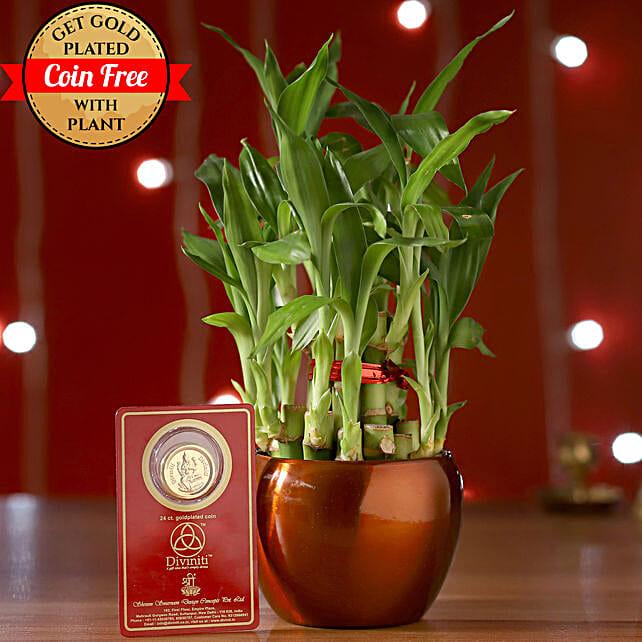 Online Bamboo Brass Pot:Send Diwali Gifts to Bengaluru