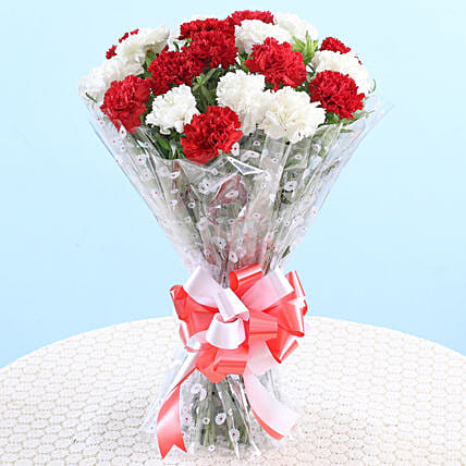 Bunch Of 18 Red White Carnations