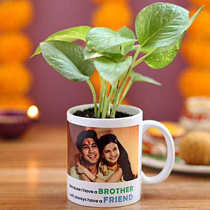Personalised Brother Friend Money Plant