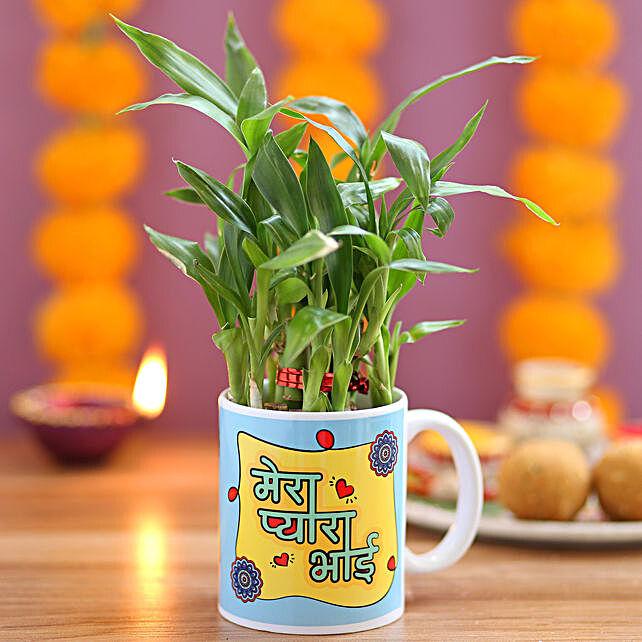 2 Layer Bamboo Plant For Pyaara Bhai