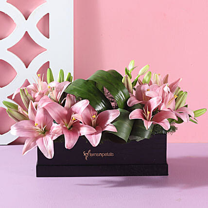 Delicate Pink Asitic Lilies