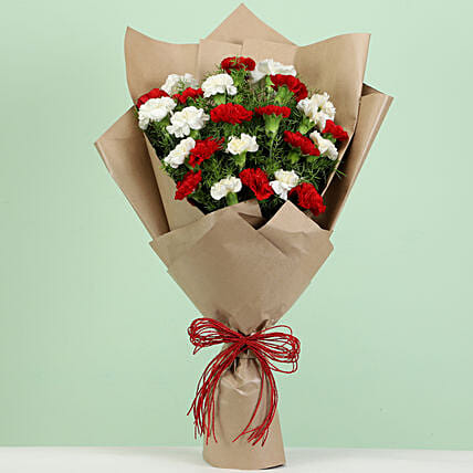 24 Romantic Red White Carnations