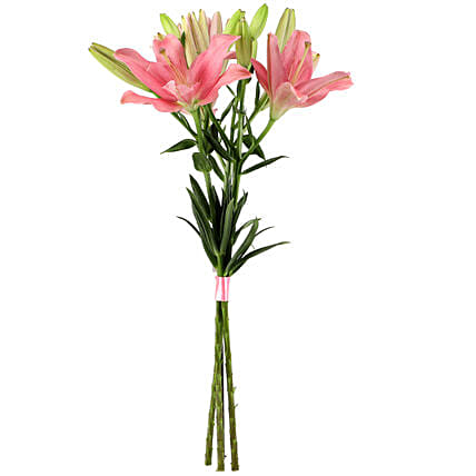 Sweet Pink Lilies without Vase
