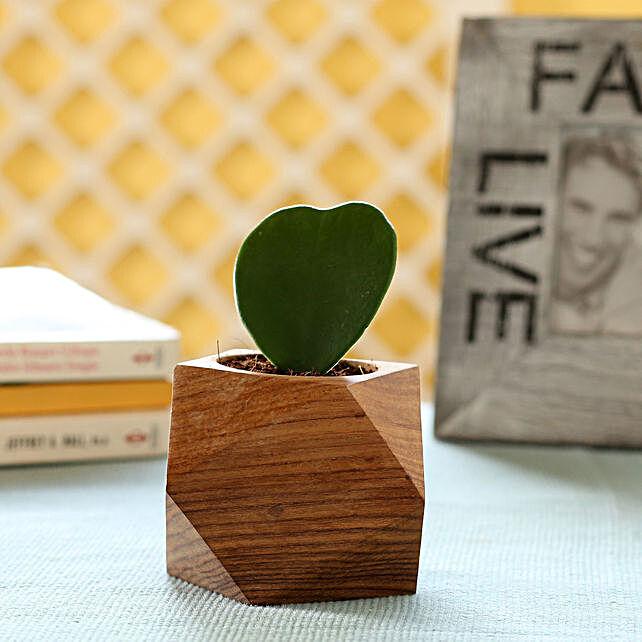 Plant In Wooden Planter Online