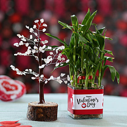 wishing tree with lucky bamboo online