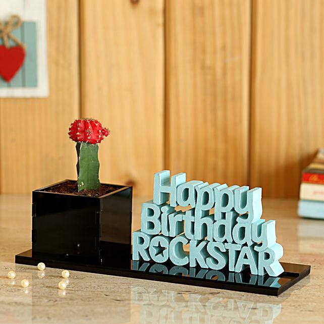 online home decor plant:Cactus and Succulents Plants