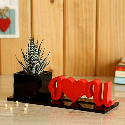 best I love you planter with plant online:Cactus and Succulents Plants