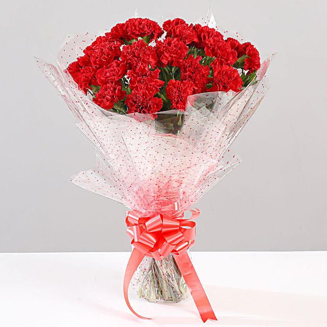 Bunch Of Ravishing 24 Red Carnations