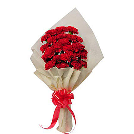 20 Red Carnations In White Paper