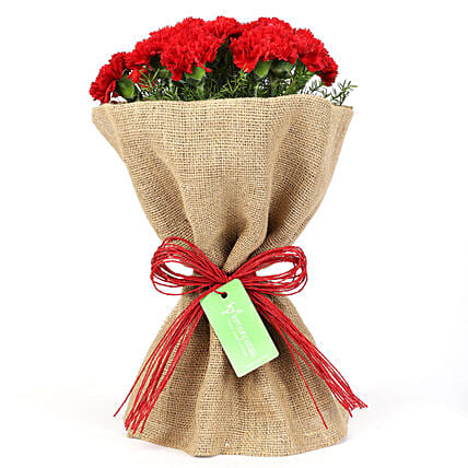 Adorable Bunch Of 12 Red Carnations in Jute