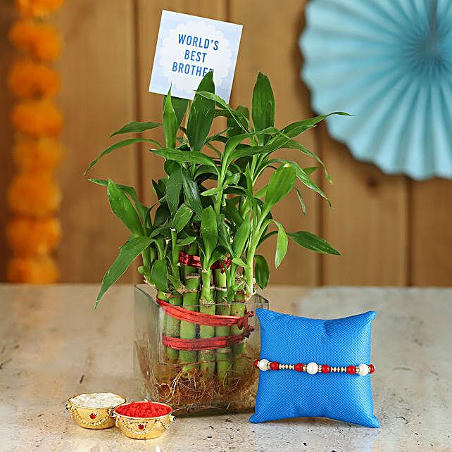 Plant & Beaded Rakhi Online