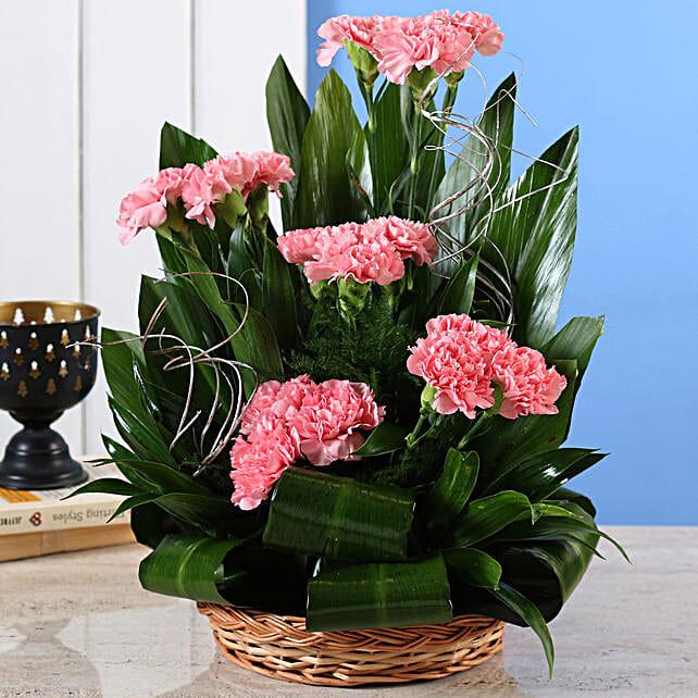 Pink Carnations Cane Basket Arrangement