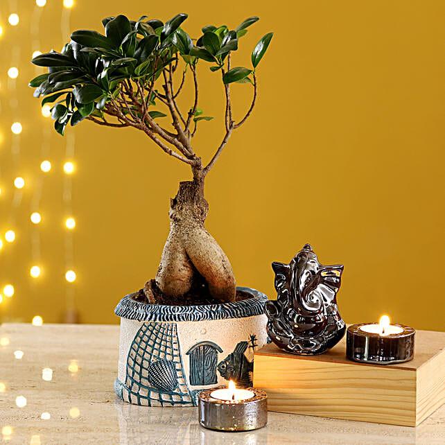 Brown Ganesha Idol & Candles With Ginseng Bonsai