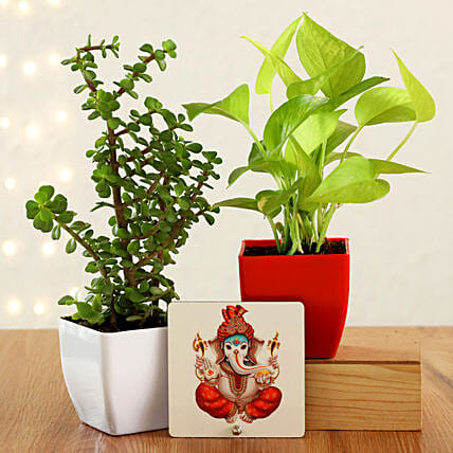 Online Plant And Ganesha Combo:Diwali Plants