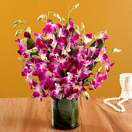 Orchids in a Vase Online