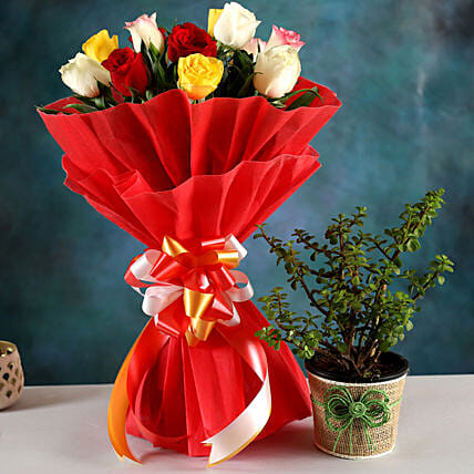 Online Jade Plant And Rose Bouquet
