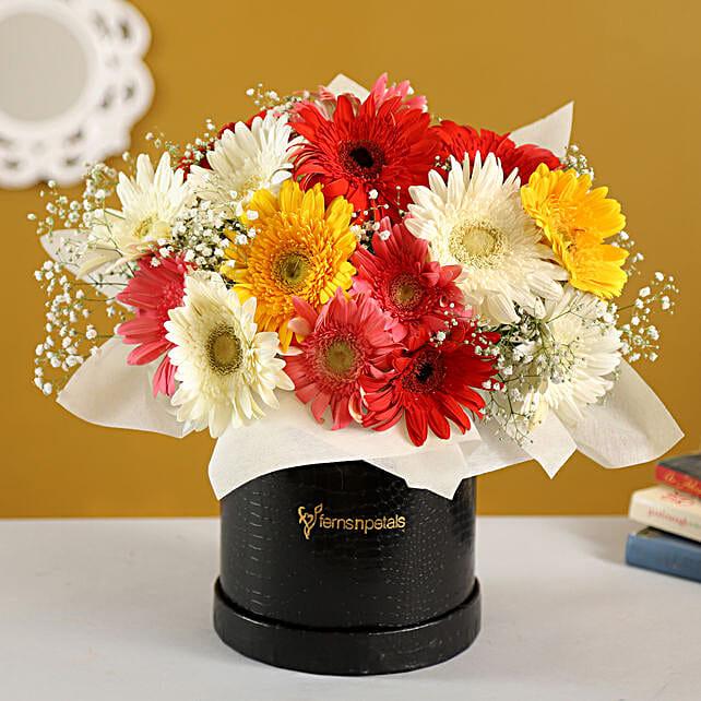 Mixed Brilliance Gerbera Blossoms Box