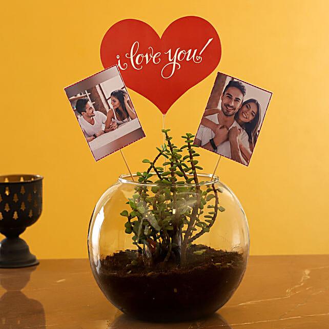 Buy Personalised Love Jade Plant Terrarium