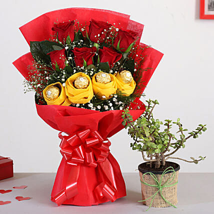 Red Roses Bouquet With Jade Plant Ferrero Rocher