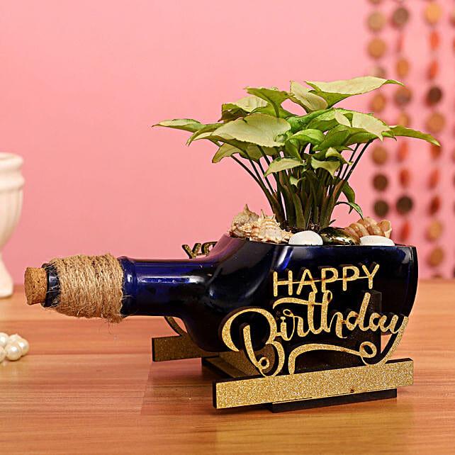 Syngonium Plant In Happy Birthday Antiquity Bottle Planter