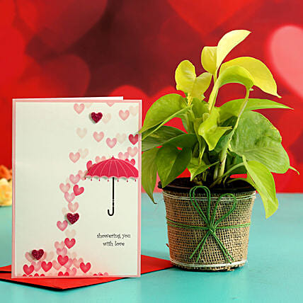 Money Plant In Plastic Pot & Greeting Card Hand Delivery