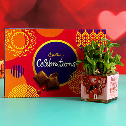 Two Layer Bamboo Plant In Sticker Vase & Cadbury Celebrations Hand Delivery:Plant Combo For Valentines Day