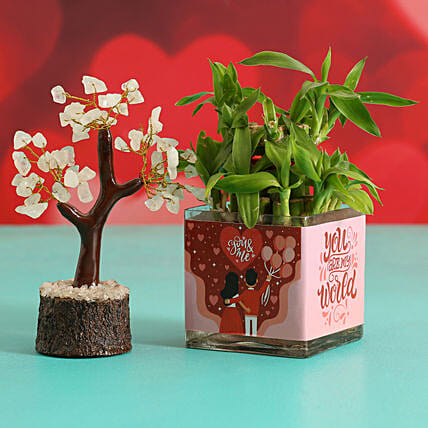 Two Layer Bamboo Plant In Sticker Vase & Wish Tree Hand Delivery
