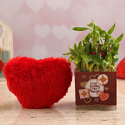 Bamboo Plant In Lucky To Have You Vase & Red Heart