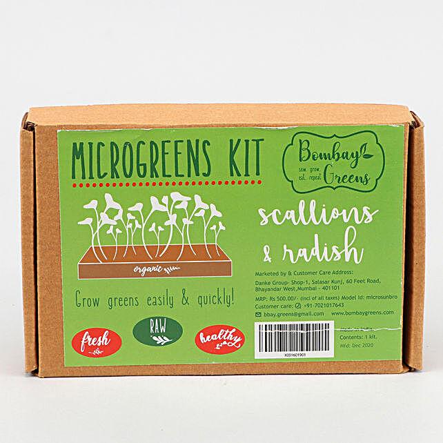 Bombay Greens Scallions And Radish DIY Microgreens Kit:Medicinal Plants
