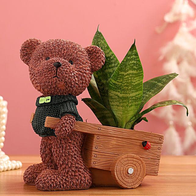 Sansevieria Plant In Brown Bear Cart Ceramic Pot:Wildlife Art planters