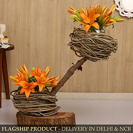 Lovely Asiatic Lilies On Wooden Log