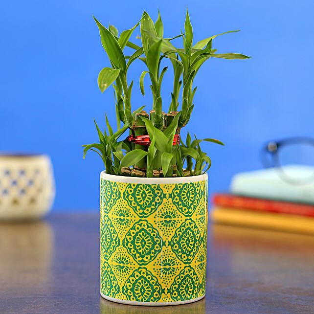 2 Layer Bamboo Plant In White Ceramic Printed Planter
