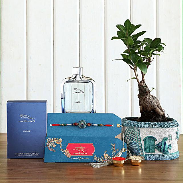 Peacock Rakhi With Ficus Bonsai Plant and Jaguar EDT