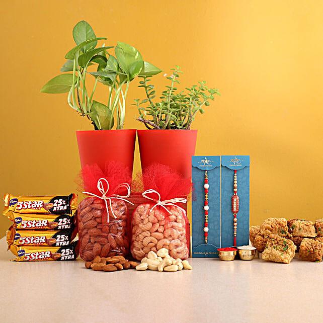 Set of 2 Rakhi And Plant Pots With Delightful Treats
